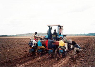 Καλλιέργεια καλαμποκιού στο Κολουέζι